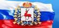 «Электронный гражданин Нижегородской области»