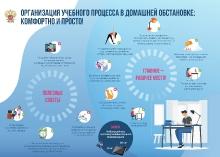 Инфографика Минпросвещения_3